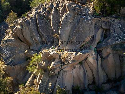 Spanien, Kanarische Inseln, Teneriffa, im Teide Nationalpark: Piedra de la Rosa (Steinbluetenblaetter)   ESP, Spain, Canary Islands, Tenerife, at Teide National Park: Piedra de la Rosa (stony blossoms leaves)