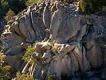 Spanien, Kanarische Inseln, Teneriffa, im Teide Nationalpark: Piedra de la Rosa (Steinbluetenblaetter) | ESP, Spain, Canary Islands, Tenerife, at Teide National Park: Piedra de la Rosa (stony blossoms leaves)