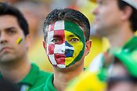 Brazil football fans