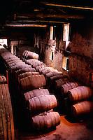 Portugal, Porto, Vila Nova de Gaia. Wine cellar with wooden casks of port wine. Porto, Portugal.