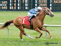 Truman's Commander winning at Delaware Park on 6/6/13