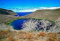 Rochas vulcânicas do arquipélago de Galápagos. Equador. 1996. Foto de Juca Martins.