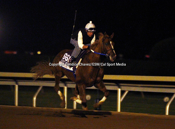 October 26, 2015: Tapiture, trained by Steven Asmussen, and owned by Winchell Thoroughbreds, is entered to run in the Breeder's Cup Las Vegas Dirt Mile $1,000,000.    Candice Chavez/ESW/CSM