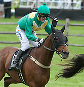 05/20/2017 - Radnor Hunt Races