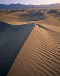 Death Valley National Park, CA:  Soft dawn light on sand and patterns of the Mesquite Flat Dunes