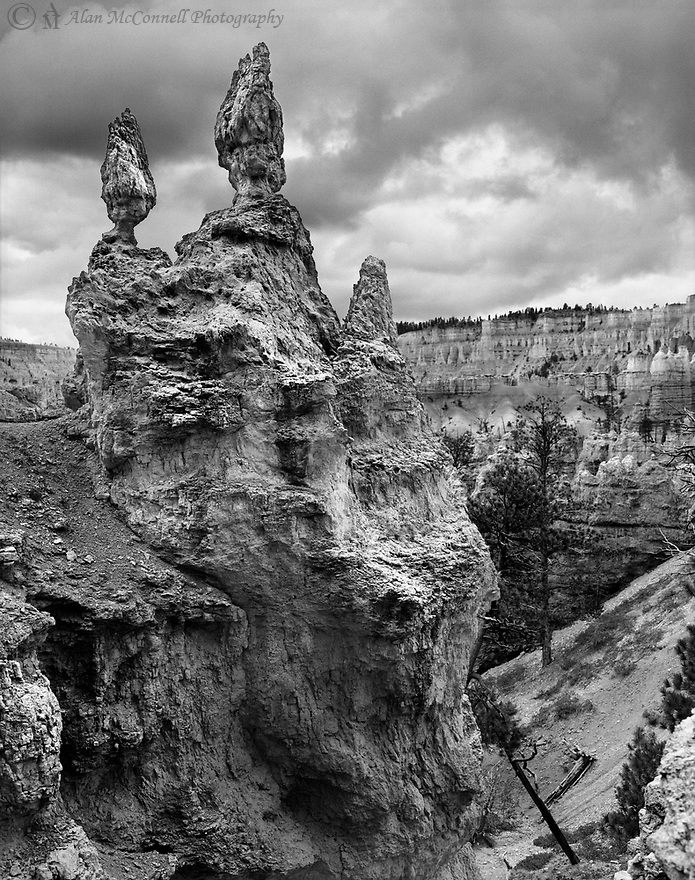 Hundreds of rock formations called Hoodoos can be found at Bryce Canyon National Park.  Nearly 180 days of freezing and thawing of water in the rock fractures primarily cause these statuesque features.  The challenge is to find your favorite formation.  While descending the Queens Garden Trail, I came upon these twin pillars precariously balanced on the rock wall.  Nice reflected light illuminates the entire formation while storm clouds form in the background.<br />