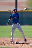 Chicago Cubs shortstop Luis Vazquez (1) during a Minor League Spring Training game against the Oakland Athletics at Sloan Park on March 19, 2018 in Mesa, Arizona. (Zachary Lucy/Four Seam Images)