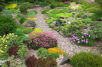 Path and rock garden at Northwest Garden Nursery, Eugene, Oregon