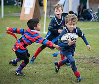 London Scottish Mini Rugby Tournament 16/10/16
