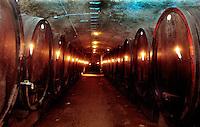 Botti in una cantina a Deidesheim lungo la strada del vino.Barrels in a cellar in Deidesheim along the wine route