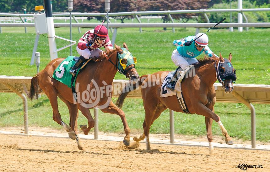 Memorys N Dreams winning at Delaware Park on 7/20/16