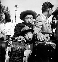 These young evacuees of Japanese ancestry are awaiting their turn for baggage inspection upon arrival at this Assembly Center.   Turlock, CA.  May 2, 1942.   Dorothea Lange. (WRA)<br /> NARA FILE #:  210-G-3C-310<br /> WAR & CONFLICT #:  777