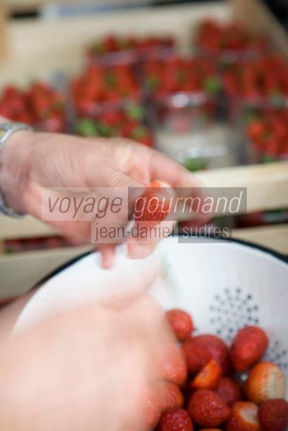 Europe/France/Aquitaine/33/Gironde/Saint-Yzans-de-Médoc: Château  Loudenne, Médoc Cru Bourgeois- la cuisine des vendanges  la cuisinière prépare la salade fraises