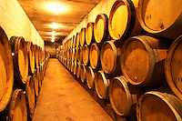 Wine aging in oak barrels in the barrique aging cellar Domaine de Triennes Nans-les-Pins Var Cote d'Azur France