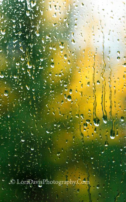Autumn raindrops on window