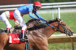 July 18, 2015: Heaven's Runway, Trevor McCarthy up, wins the Hockessin Stakes, six furlongs for four-year-olds and up, at Delaware Park in Stanton DE.  Trainer is Tim Ice, owners are K.K. Jayaraman and V. Devi Jayaraman. Joan Fairman Kanes/ESW/CSM