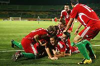 Hungary vs Italy, October 8, 2009