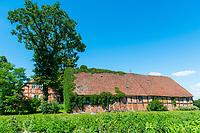 Fachwerkhaus, alte Scheune, Neulieitzegöricke, ältestes Kolonistendorf im Oderbruch, Neulewin, Oderbruch, Brandenburg, Deutschland