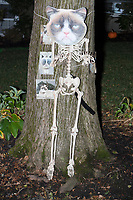 Life-sized skeletons are dressed up for Halloween decorations along Hillcrest Road in Belmont, Massachusetts, USA, on Mon., Oct. 30, 2017. A resident said the neighborhood has been doing similar coordinated decorations along the road for the previous 3 or 4 years.  In this image, the skeleton is dressed as and surrouned by Grump Cat memes.