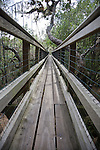 A canopy walkway leads to a viewing tower at Myakka River State Park in Florida.