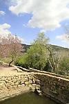 Israel, Jerusalem Mountains, Ein Sataf in Sataf