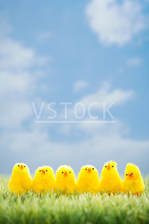 Toy chicks on grass