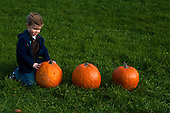 MR / Schenectady, NY. Boy (6) looks at one of three pumpkins. MR: Lus1. ID: AK-ICP. © Ellen B. Senisi