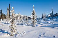 Winter landscape of the Brooks Range near Wiseman, Alaska.