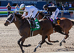 February 27, 2021:  Fearless, #5, ridden by Irad Ortiz Jr, wins the Winstar Gulfstream Park Mile (Grade 2) on Fountain of Youth Day at Gulfstream Park in Hallandale Beach, Florida. Liz Lamont/Eclipse Sportswire/CSM