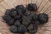 Europe/France/Aquitaine/24/Dordogne/Vallée de la Dordogne/Périgord/Périgord noir/Sarlat-la-Canéda: Etal de truffes sur le marché