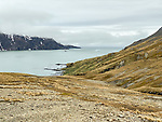 Shackleton Hike - Last 6 Km. From Fortuna Bay To Stomness Harbor