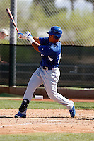 Jaime Ortiz  - Los Angeles Dodgers - 2009 spring training.Photo by:  Bill Mitchell/Four Seam Images