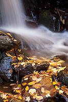 Balsom Mountain Road, Great Smoky Mountains, North Carolina