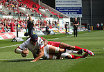 Guiness Pro12<br /> Lock Dan Tuohy dives over to score Ulsters second try of the match.<br /> Scarlets v Ulster<br /> Parc y Scarlets<br /> <br /> 06.09.14<br /> ©Steve Pope-SPORTINGWALES