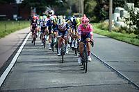 Sebastian Langeveld (BEL/EF Pro Cycling)<br /> <br /> Heistse Pijl 2020<br /> One Day Race: Heist-op-den-Berg > Heist-op-den-Berg 190km  (UCI 1.1)<br /> ©kramon
