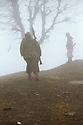 Iran 1982. Peshmergas in the fog