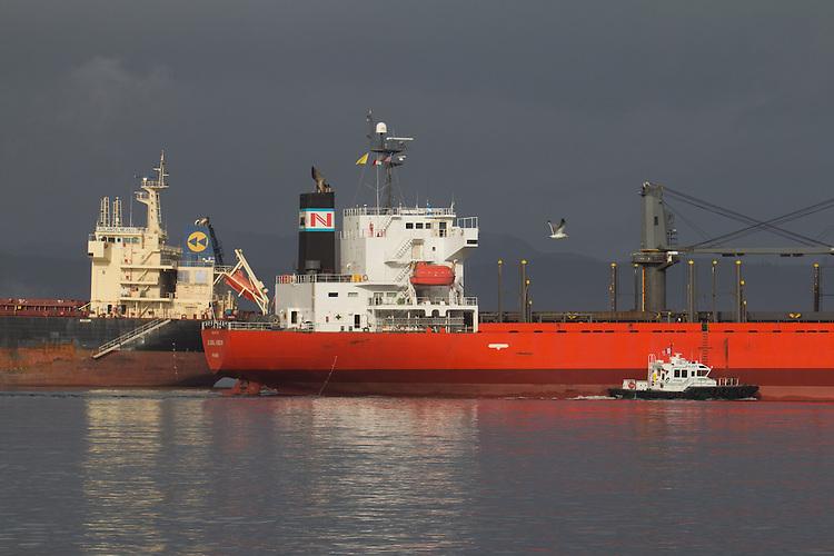 Columbia River pilot, pilot boat, cargo ships, bulk carrier, Columbia River, Astoria, Oregon State, Pacific Northwest, United States, Oregon Coast,