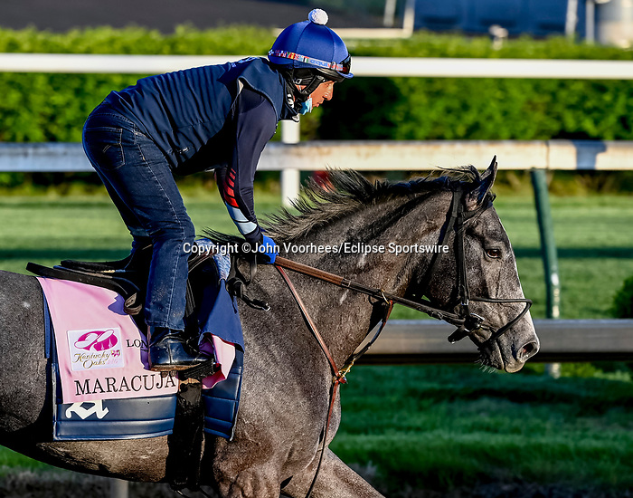 April 27, 2021: Maracuja exercises in preparation for the Kentucky Oaks at Churchill Downs on April 27, 2021 in Louisville, Kentucky. John Voorhees/Eclipse Sportswire/CSM