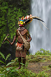 Chief Timon Tumbu Huli Wigman in traditional / ceremonial dress with plumes of Birds of Paradise, parrots and lorikeets. Tari Valley, Papua New Guinea.