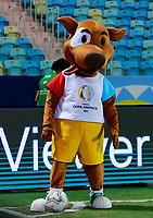 3rd July 2021, Estádio Olímpico Pedro Ludovico stadium, Goiânia, Brazil: Copa America Football tournament, Argentina versus Ecuador;   Pibe, mascot of Copa América 2021