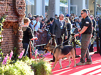 Security Dog @ the premiere of 'The Jungle Book' held @ El Capitan theatre.<br /> April 4, 2016