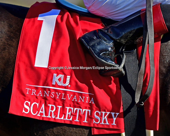 April 02, 2021: Scarlett Sky #1 ridden by Joel Rosario wins the Transylvania Stakes (Grade 3) on Keeneland Opening Day at Keeneland Race Course in Lexington, Kentucky on April 02, 2021. Jessica Morgan/Eclipse Sportswire/CSM