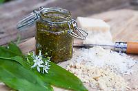 Bärlauch-Pesto, Bärlauchpesto, Pesto aus Bärlauch, Parmesankäse, Pinienkerne, Olivenöl, Frühlingspesto, Wildkräuterpesto, Bärlauch, Bär-Lauch, Allium ursinum, wild garlic, Ramsons, Wood Garlic, Wood-Garlic, ramsons, buckrams, broad-leaved garlic, L'ail des ours, ail sauvage