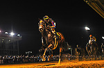 August 27, 2021: Vertical Threat #6, ridden by jockey Florent Geroux wins the Russell Road Stakes at Charles Town Race Course in Charles Town West Virginia on August 27th, 2021. Tim Sudduth/Eclipse Sportswire/CSM