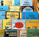 Shopping, Europa Books, Chicago, Illinois