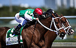 HALLANDALE FL - FEBRUARY 27: Cathryn Sophia #5, ridden by Javier Castellano drives off the turn en route to winning the Fasig-Tipton Davona Dale Stakes at Gulfstream Park on February 27, 2016 in Hallandale, Florida.(Photo by Alex Evers/Eclipse Sportswire/Getty Images)
