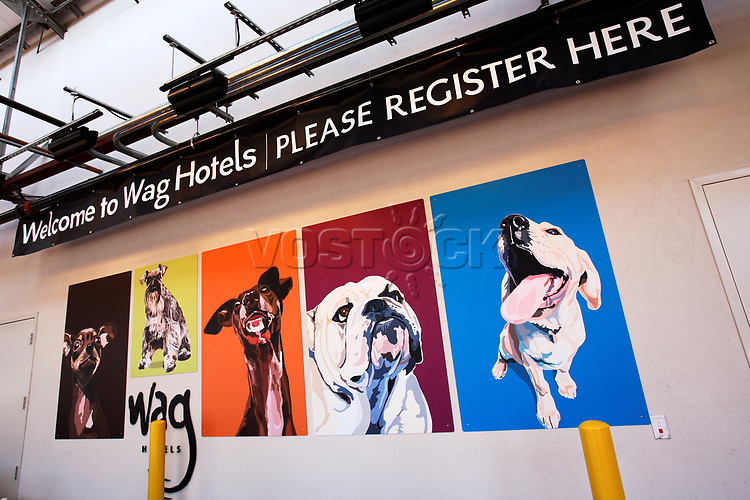 The Wag hotel, a luxury resort for dogs, opened in San Francisco on Saturday, May 12, 2007. It offers over 230 rooms and suites specifically designed for its four-legged guests as well as spa services such as pedicures, facials, massage and grooming. <br /> <br /> <br /> <br /> <br /> <br /> (Bildtechnik: sRGB, <br /> <br /> 27.15 MByte vorhanden)
