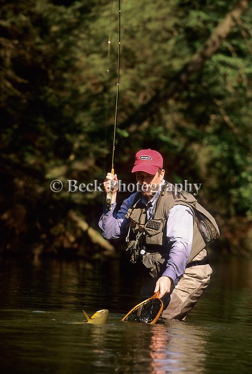 Jim Wood landing  brown trout in PA