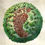Concept of global footprint