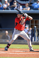 Infielder Chris Herrmann (12) of the Minnesota Twins during a spring training game against the Tampa Bay Rays on March 2, 2014 at Charlotte Sports Park in Port Charlotte, Florida.  Tampa Bay defeated Minnesota 6-3.  (Mike Janes/Four Seam Images)